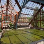 Hortus interieur